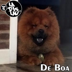 DE BOA